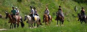 Horseback Riding, Pilion Terra Hotel | Hotels in Pelion | Portaria Hotels|  Portaria | Pelion | Volos | Greece